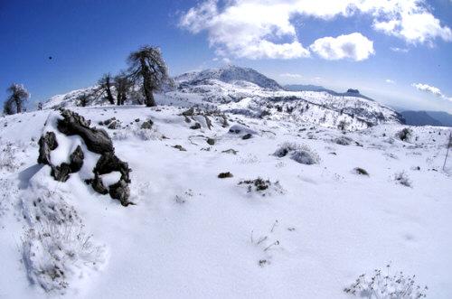 Cumbres Sierra de las Nieves