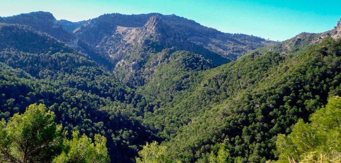 La propuesta de Parque Nacional Sierra de las Nieves inicia su tramitación administrativa.