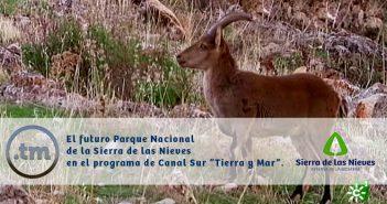 """Vídeo íntegro del reportaje del programa """"Tierra y Mar"""" de Canal Sur Televisión dedicado a la Sierra de las Nieves."""