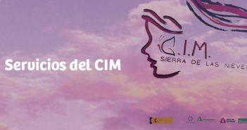 Servicios del CIM